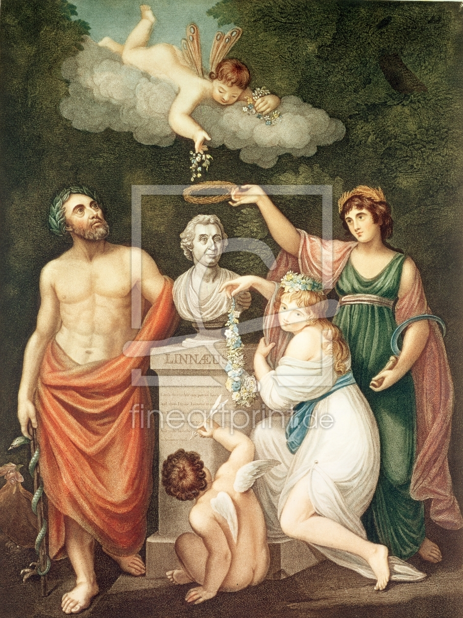 Bild-Nr.: 31002011 Aesculapius, Flora, Ceres and Cupid Honouring the Bust of Linnaeus, plate 17 fro erstellt von Anonyme Künstler