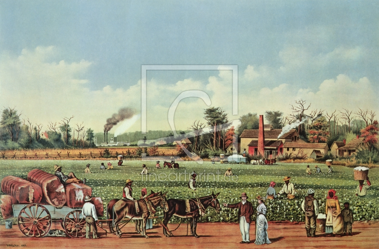 Bild-Nr.: 31002071 A Cotton Plantation on the Mississippi - the Harvest, engraved by Currier and Iv erstellt von Walker, William Aiken