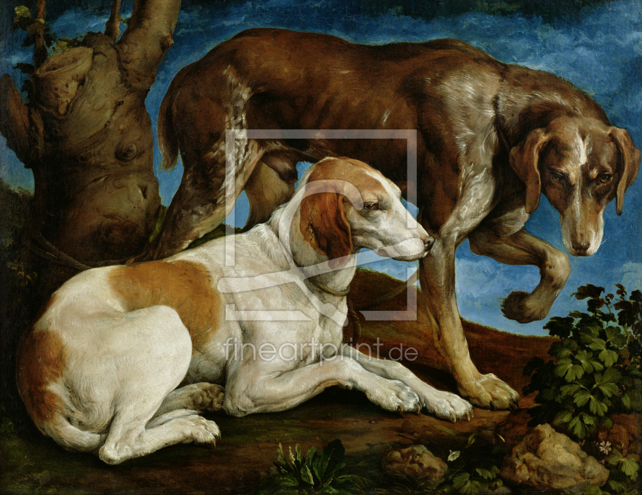 Bild-Nr.: 31002557 Two Hunting Dogs Tied to a Tree Stump, c.1548-50 erstellt von Bassano, Jacopo (Jacopo da Ponte)